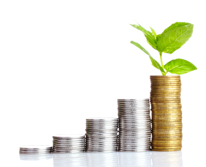 Wise property investment growth